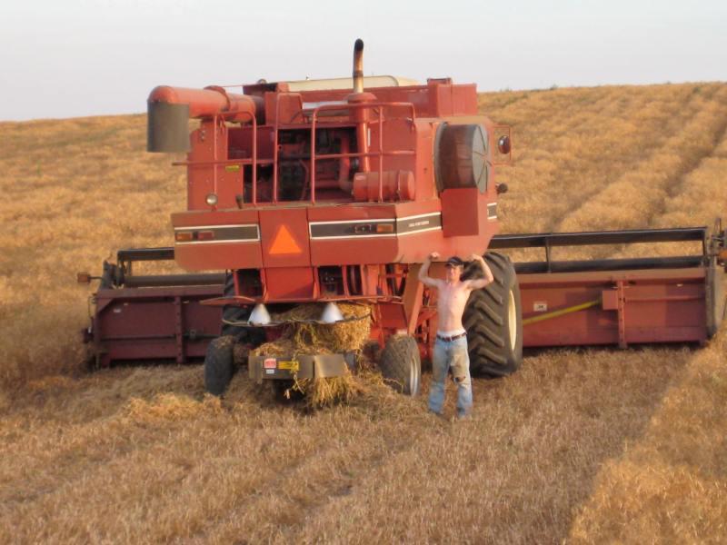 farm (17)